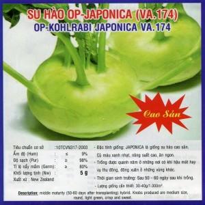Hạt giống su hào op - japonica